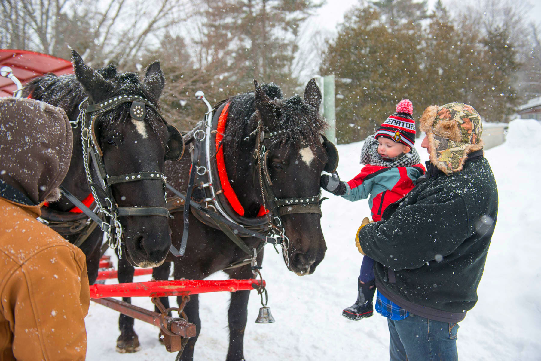 Port Carling Winterfest Intro Image